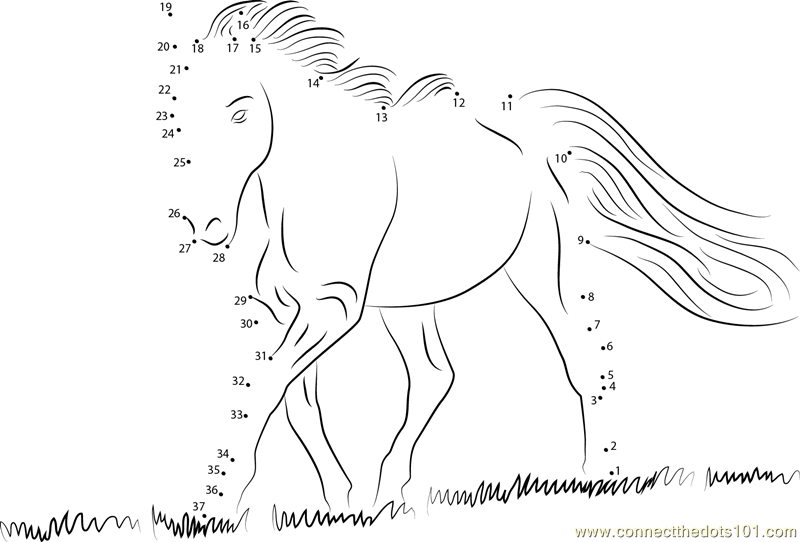 White Horse dot to dot printable worksheet - Connect The Dots