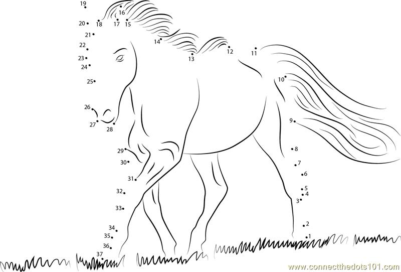 bdo how to connect a horse