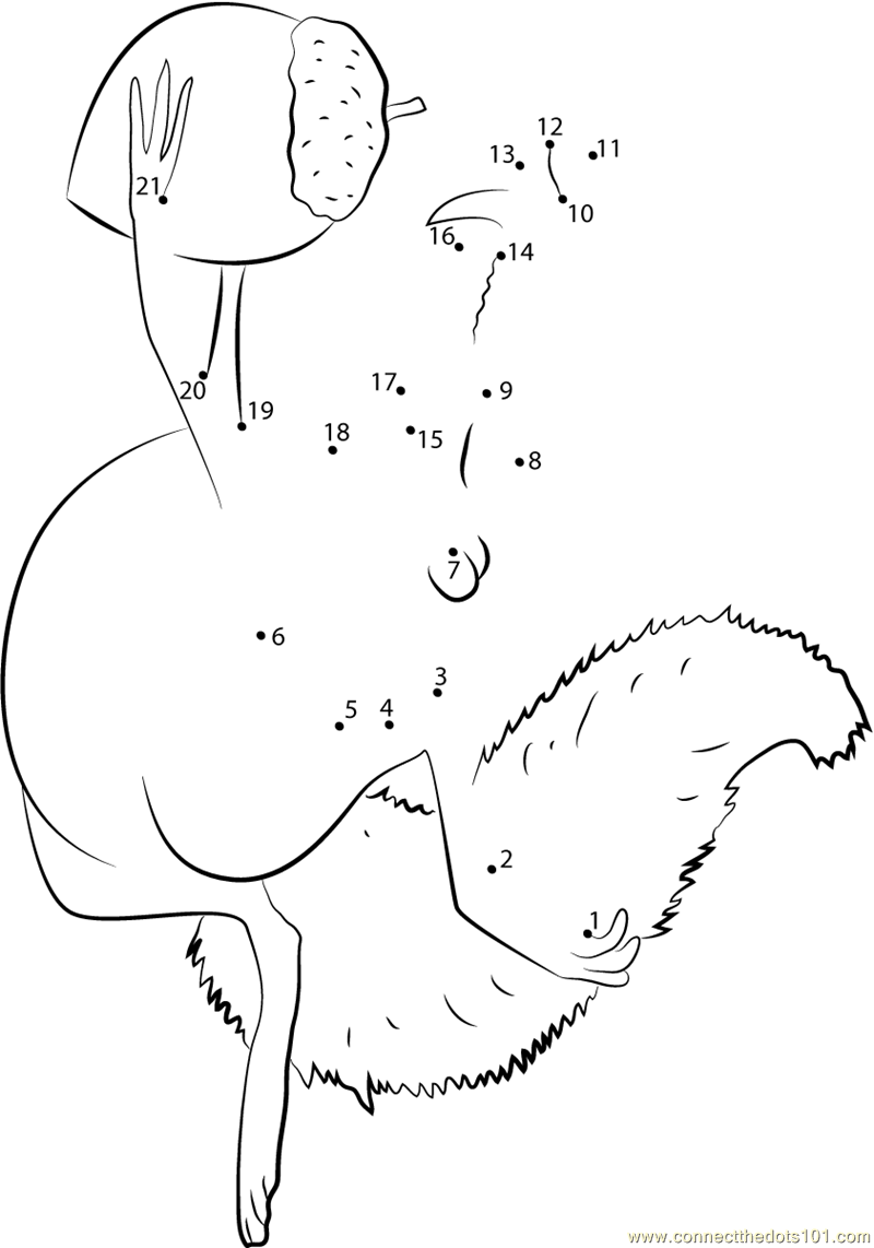 Ice Age Coloring Pages Pdf : Scrat dot to printable worksheet connect the dots