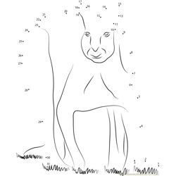 Kangaroo at Looking Dot to Dot Worksheet