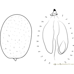 Kumquats Dot to Dot Worksheet