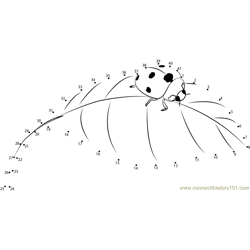 Ladybug On a Leaf Dot to Dot Worksheet