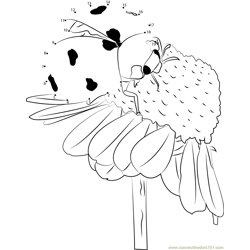 Ladybug Pollinate Flowers Dot to Dot Worksheet