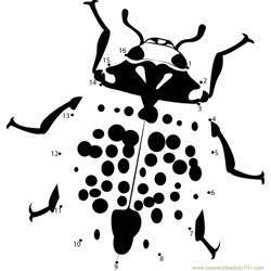 Rorschach Ladybug Dot to Dot Worksheet