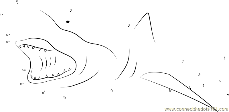 Shark dot to dot pic numbers 1-70 practice pdf book
