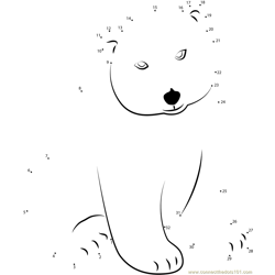 Little Polar Bear Lars