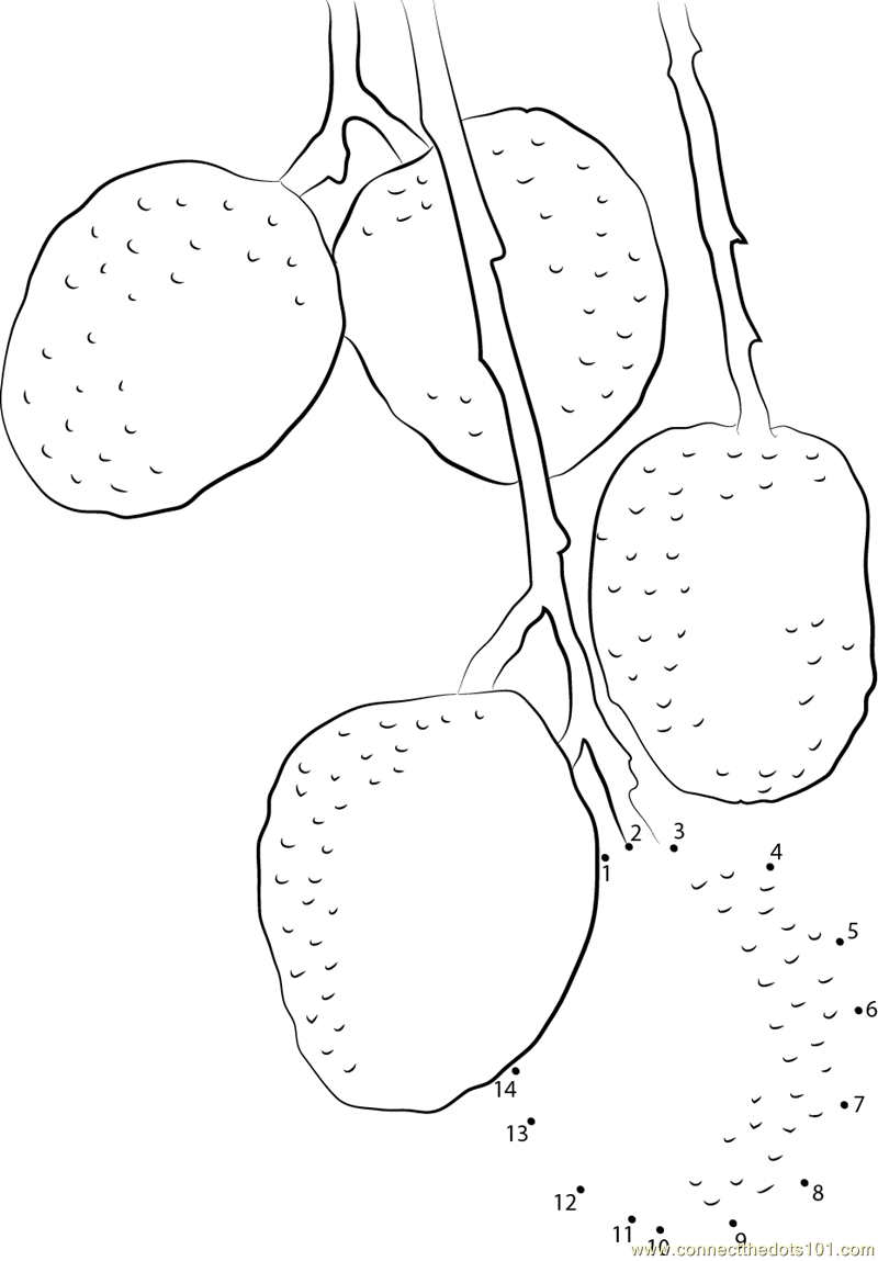 Lychee Page Coloring Pages