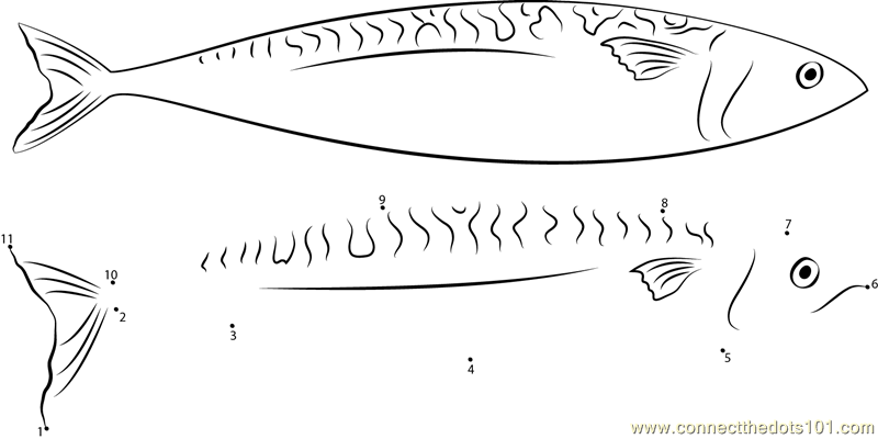 Queen mackerel dot to dot printable worksheet connectthedots101 queen mackerel dot to dot printable worksheet connectthedots101 altavistaventures Image collections
