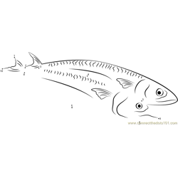 Fresh Mackerel Dot to Dot Worksheet