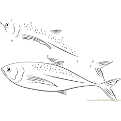 Horse Mackerel Dot to Dot Worksheet