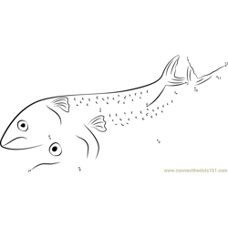 Sad Mackerel Dot to Dot Worksheet