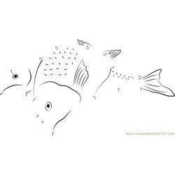 Shark Mackerel Dot to Dot Worksheet