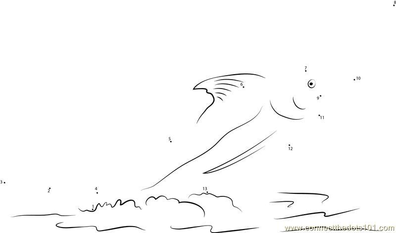 Jumping Marlin Fish Dot To Dot Printable Worksheet