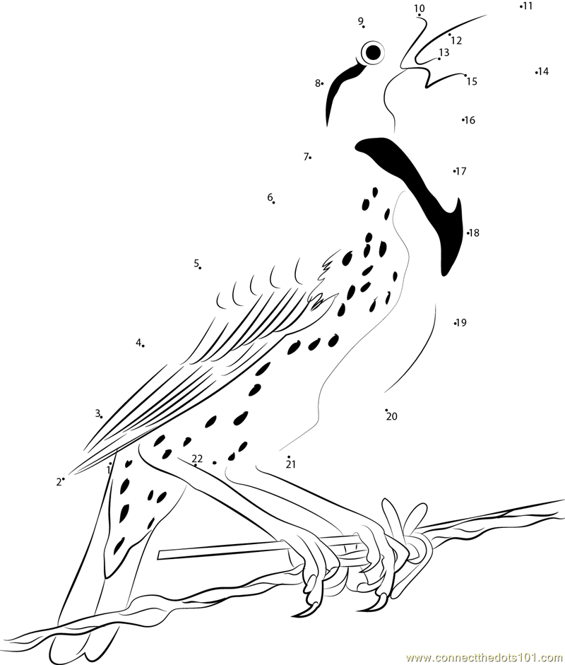 western meadowlark coloring page - a western meadowlark perched dot to dot printable