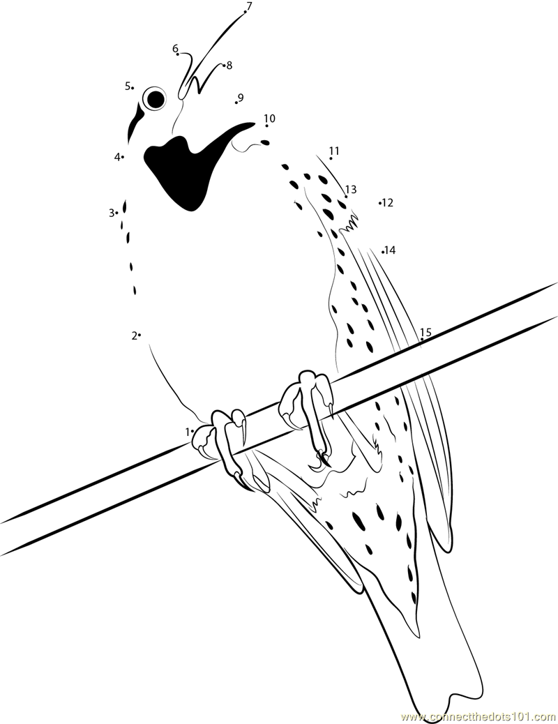 western meadowlark coloring page - eastern meadowlark male on fence post dot to dot printable