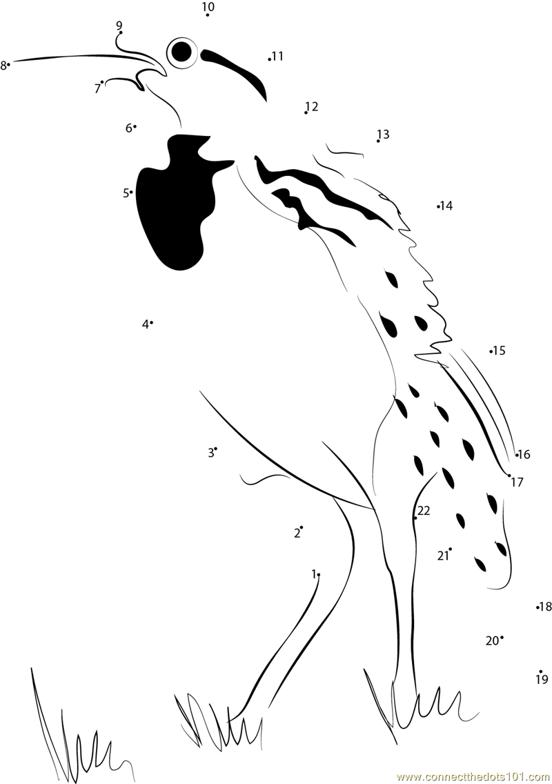 Lovely meadowlark dot to dot printable worksheet connect for Meadowlark coloring page