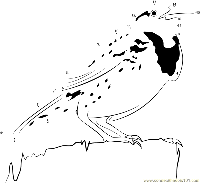 Meadowlark dot to dot printable worksheet connect the dots for Meadowlark coloring page