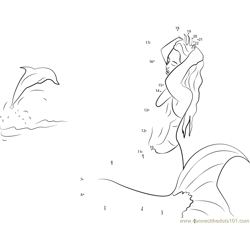 Dolphins Mermaid