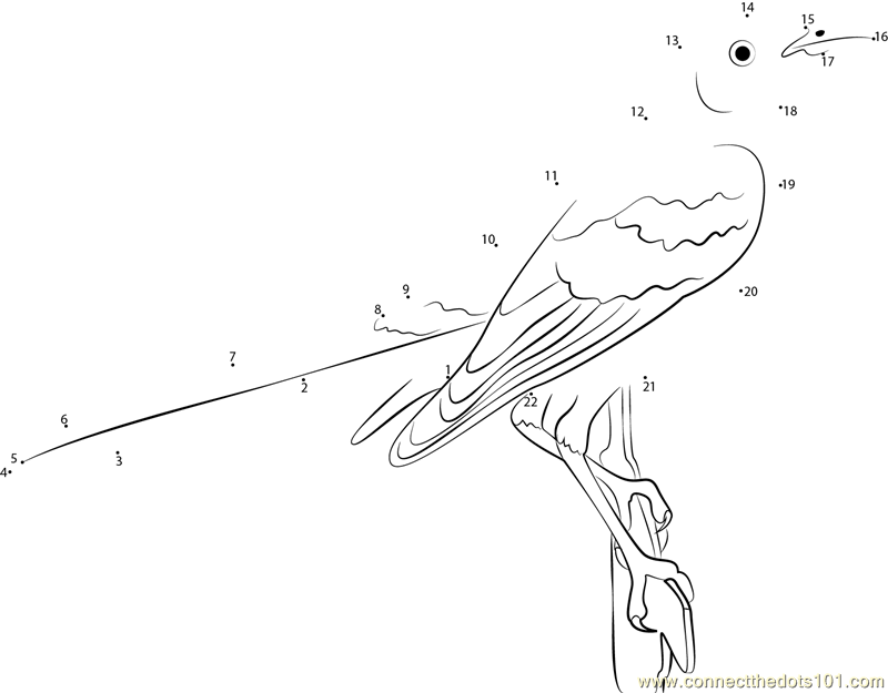 Adult Mockingbird Dot To Dot Printable Worksheet