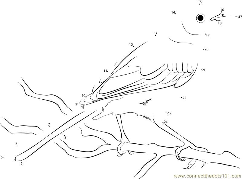 Beautiful Mockingbird Dot To Dot Printable Worksheet