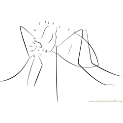 Aedes Aegypti Doggett Dot to Dot Worksheet