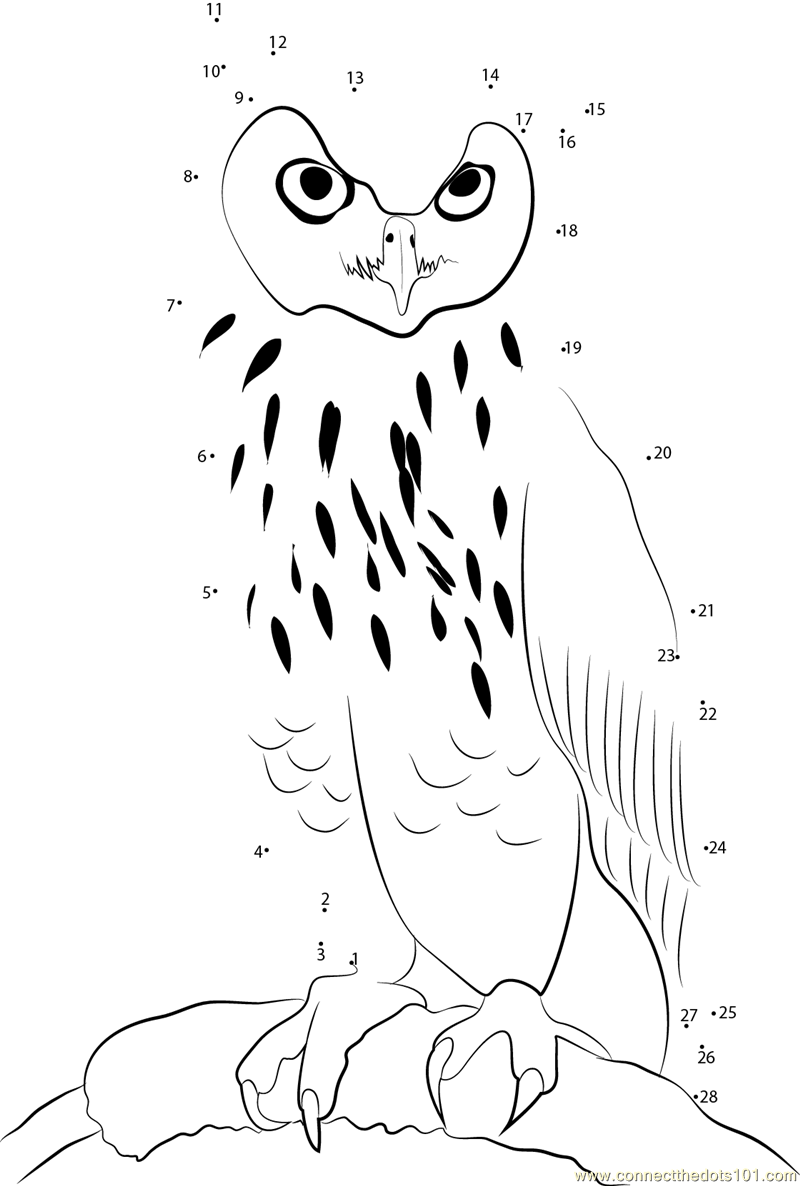 Eagle Owl Dot To Dot Printable Worksheet Connect The Dots