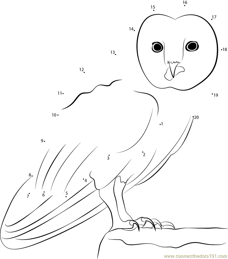 Great Horned Owl dot to dot printable worksheet - Connect The Dots