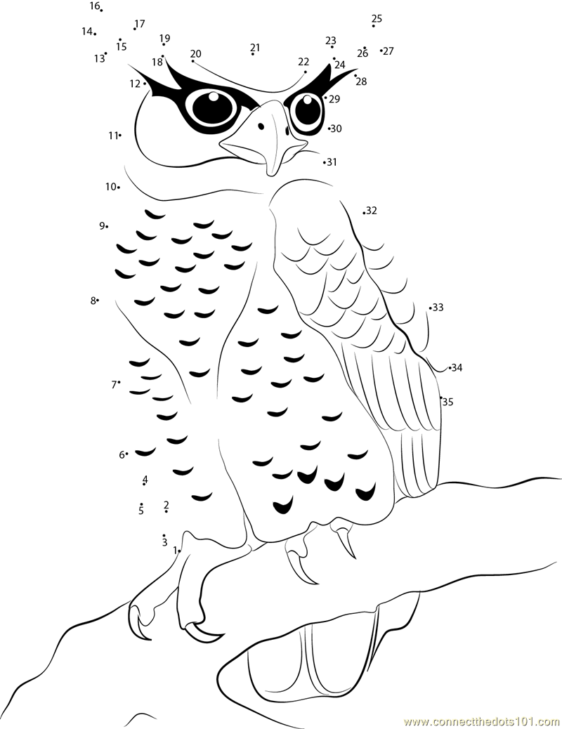 Owl Connect the Dots Worksheets Printable for Kids – Owl Worksheets