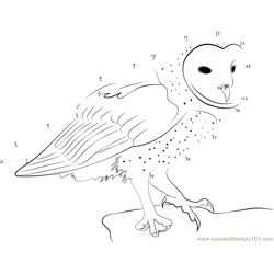 Owl Dot to Dot Worksheet