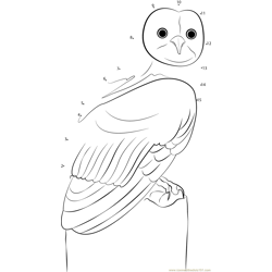 Young Owl Dot to Dot Worksheet