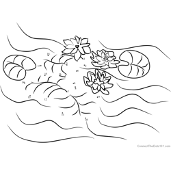 Water Lilies Dot to Dot Worksheet