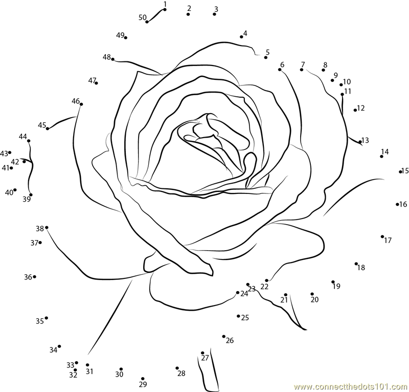 Petite Rose Flower Dot To Dot Printable Worksheet