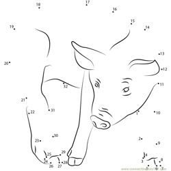 Pig Dot to Dot Worksheet