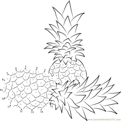 Two Pineapples Dot to Dot Worksheet