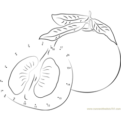 Delicious Pomelo Dot to Dot Worksheet