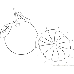 Pomelo Cut in Red Dot to Dot Worksheet