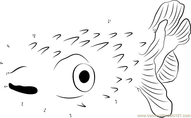 Globefish Dot To Dot Printable Worksheet
