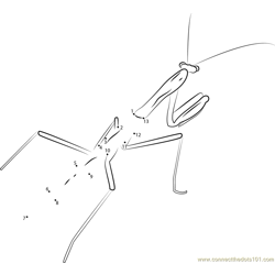 Green Praying Mantis Dot to Dot Worksheet