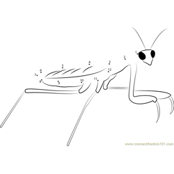 Mantis Looking At Me Dot to Dot Worksheet