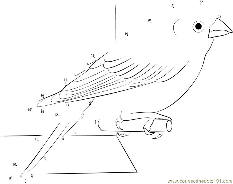 purple finch coloring page - finch dot to dot printable worksheet connect the dots