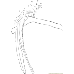 Quetzal Tropical Bird Dot to Dot Worksheet