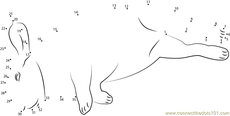 mini lop coloring pages | Mini Rex Sleeping dot to dot printable worksheet - Connect ...