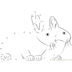 Two Rabbits Together Dot to Dot Worksheet