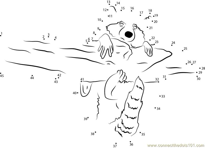 Raccoon Hug A Tree Dot To Dot Printable Worksheet