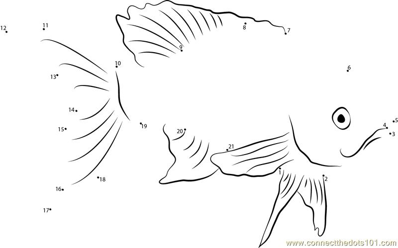 Rainbowfish Dot To Dot Printable Worksheet