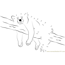 Panda Sleeping On Tree Dot to Dot Worksheet