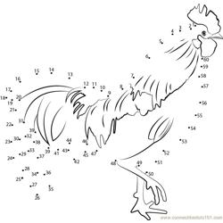 Tired Rooster Dot to Dot Worksheet
