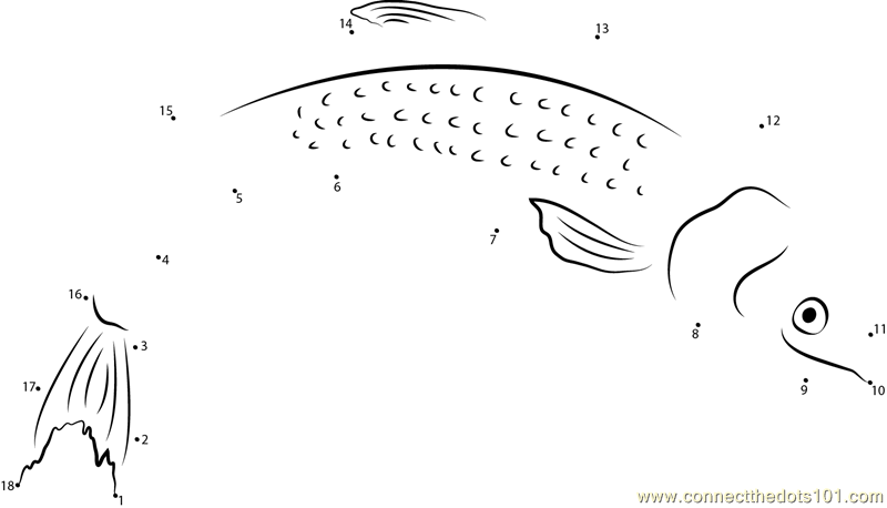 Ocean Chinook Salmon Coloring Pages Coloring Pages