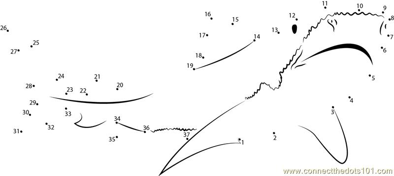 Tiger Shark Dot To Printable Worksheet