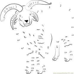Sheep See Dot to Dot Worksheet